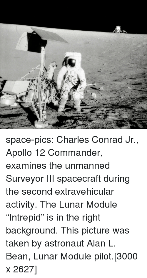 """Taken, Tumblr, and Apollo: space-pics:  Charles Conrad Jr., Apollo 12 Commander, examines the unmanned Surveyor III spacecraft during the second extravehicular activity. The Lunar Module """"Intrepid"""" is in the right background. This picture was taken by astronaut Alan L. Bean, Lunar Module pilot.[3000 x 2627]"""