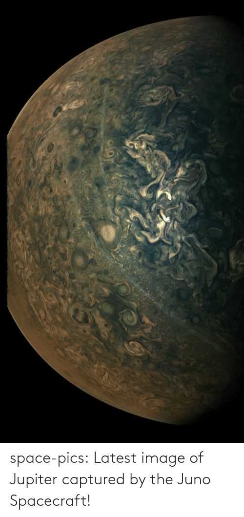 Jupiter: space-pics:  Latest image of Jupiter captured by the Juno Spacecraft!