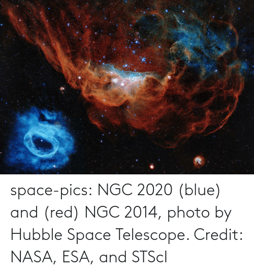 red: space-pics:  NGC 2020 (blue) and (red) NGC 2014, photo by Hubble Space Telescope. Credit: NASA, ESA, and STScI