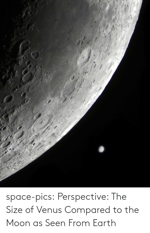 the moon: space-pics:  Perspective: The Size of Venus Compared to the Moon as Seen From Earth