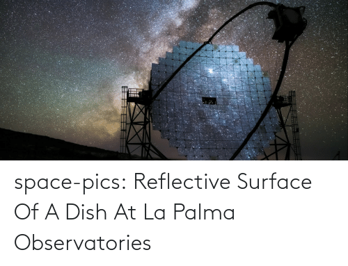 La: space-pics:  Reflective Surface Of A Dish At La Palma Observatories