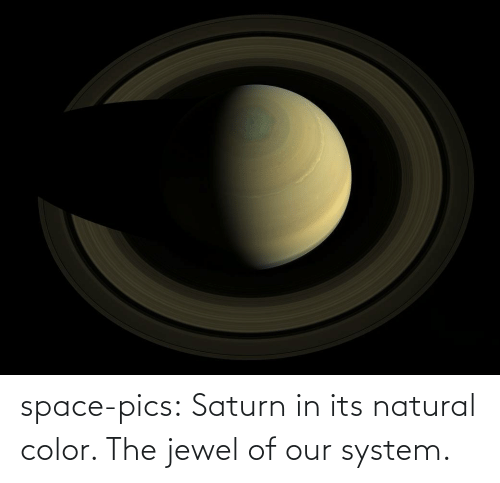 Of Our: space-pics:  Saturn in its natural color. The jewel of our system.
