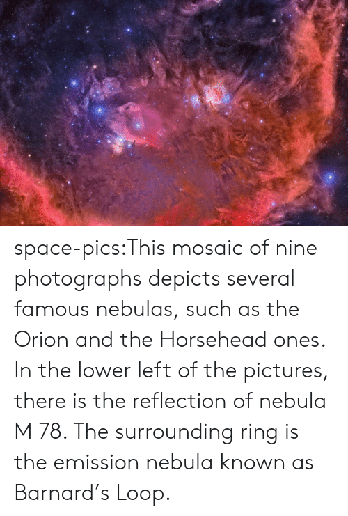 Photographs: space-pics:This mosaic of nine photographs depicts several famous nebulas, such as the Orion and the Horsehead ones. In the lower left of the pictures, there is the reflection of nebula M 78. The surrounding ring is the emission nebula known as Barnard's Loop.