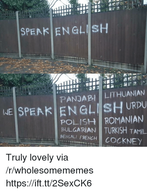 tamil: SPEAK ENGLISH  PANDABI LITHUANIAN  WEİSPEAKI EN GLIİsHURDU  POLISH ROMANIAN  BULGARIAN TURKISH TAMIL  BENGALI FRENCH COCKNEY Truly lovely via /r/wholesomememes https://ift.tt/2SexCK6