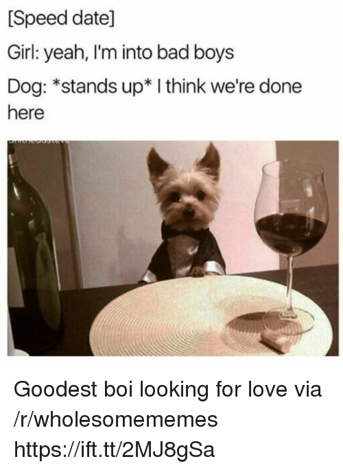 Bad, Bad Boys, and Love: [Speed date]  Girl: yeah, I'm into bad boys  Dog: *stands up* I think we're done  here Goodest boi looking for love via /r/wholesomememes https://ift.tt/2MJ8gSa