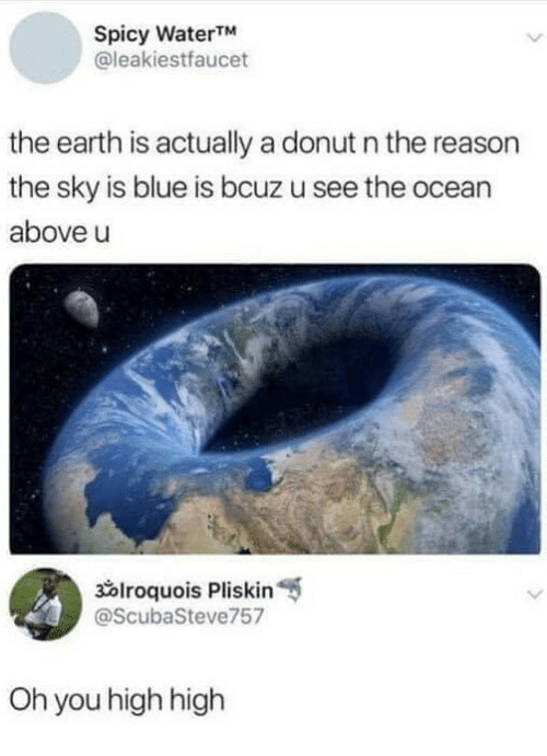 Blue, Earth, and Ocean: Spicy WaterTM  @leakiestfaucet  the earth is actually a donut n the reason  the sky is blue is bcuz u see the ocean  above u  x1roquois Pliskin  @ScubaSteve757  Oh you high high