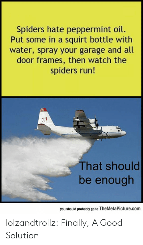 Run, Squirt, and Tumblr: Spiders hate peppermint oil.  Put some in a squirt bottle with  water, spray your garage and all  door frames, then watch the  spiders run!  31  That should  be enough  you should probably go to TheMetaPicture.com lolzandtrollz:  Finally, A Good Solution