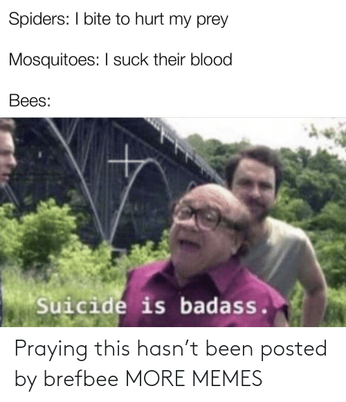 blood: Spiders: I bite to hurt my prey  Mosquitoes: I suck their blood  Bees:  Suicide is badass. Praying this hasn't been posted by brefbee MORE MEMES