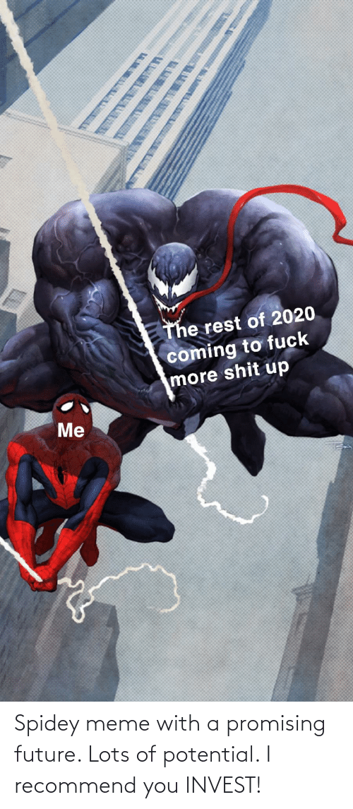 Promising: Spidey meme with a promising future. Lots of potential. I recommend you INVEST!