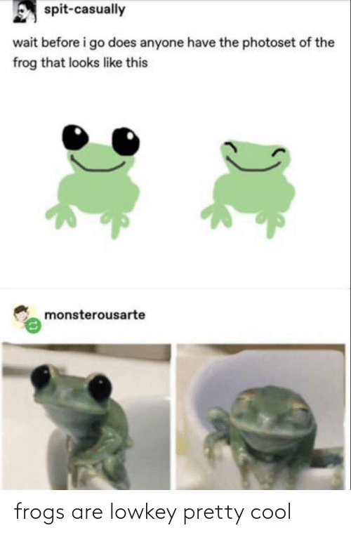 I Go: spit-casually  wait before i go does anyone have the photoset of the  frog that looks like this  monsterousarte frogs are lowkey pretty cool