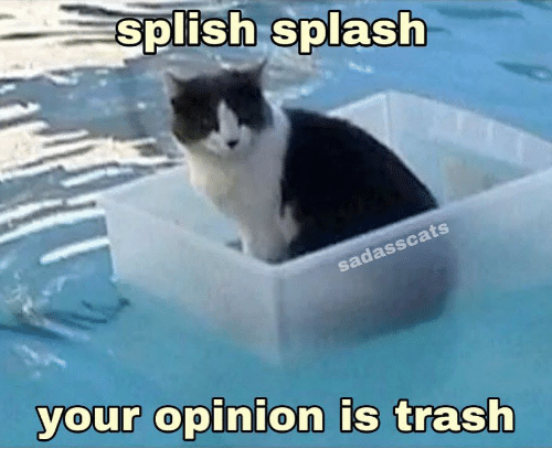 opinion: splish splash  sadasscats  your opinion is trash