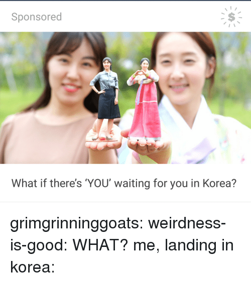 Target, Tumblr, and Blog: Sponsored  What if there's YOU waiting for you in Korea? grimgrinninggoats: weirdness-is-good: WHAT? me, landing in korea: