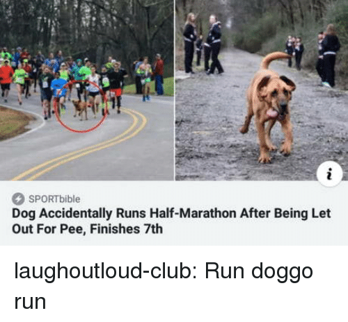 Club, Run, and Tumblr: SPORTbible  Dog Accidentally Runs Half-Marathon After Being Let  Out For Pee, Finishes 7th laughoutloud-club:  Run doggo run