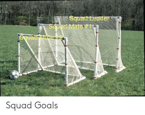 Goals, Squad, and Sound: Squad Leader  Sound Mate  SETuad 7ae Squad Goals