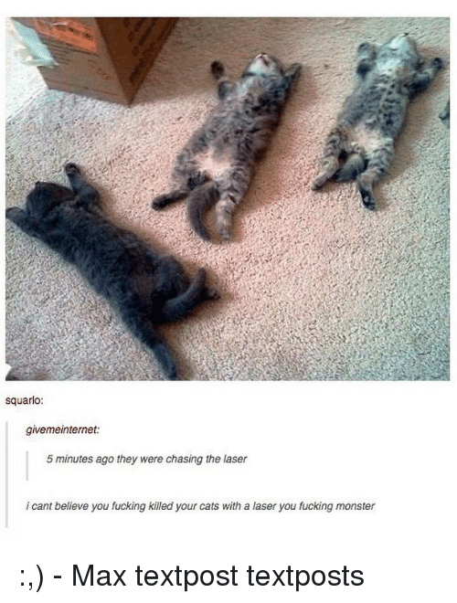 Cats, Fucking, and Memes: squarlo:  givemeinternet:  5 minutes ago they were chasing the laser  i cant believe you fucking killed your cats with a laser you fucking monster :,) - Max textpost textposts