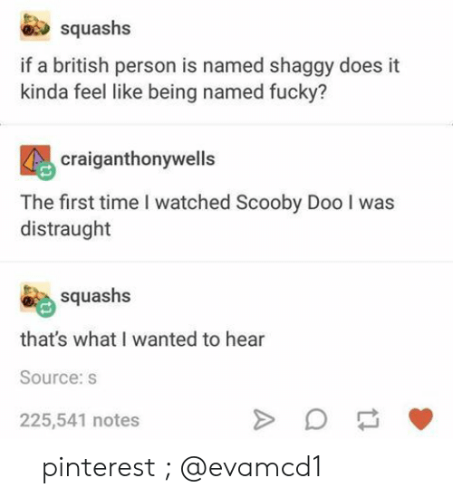 Scooby Doo, Pinterest, and Time: squashs  if a british person is named shaggy does it  kinda feel like being named fucky?  craiganthonywells  The first time I watched Scooby Doo I was  distraught  squashs  that's what I wanted to hear  Source:s  225,541 notes 『 pinterest ; @evamcd1 』