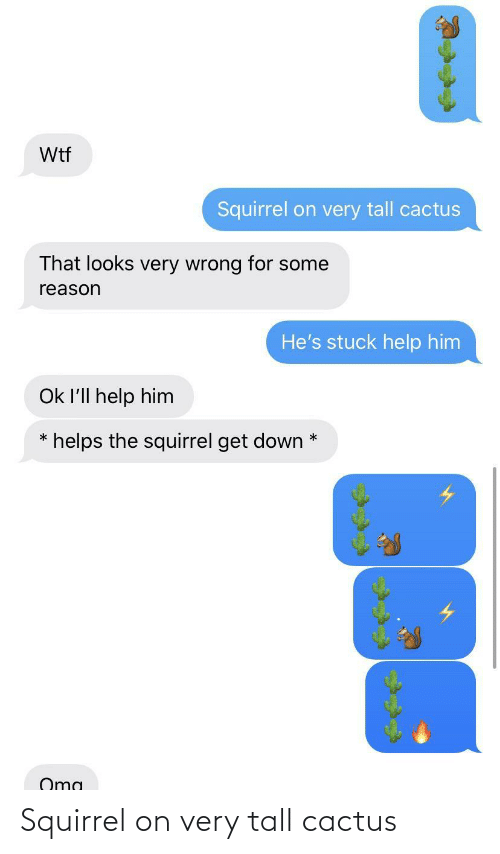 tall: Squirrel on very tall cactus