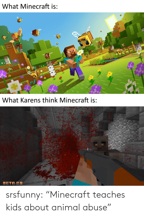 "minecraft: srsfunny:  ""Minecraft teaches kids about animal abuse"""