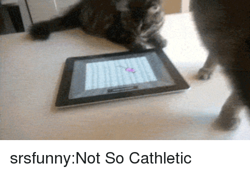 Tumblr, Blog, and Http: srsfunny:Not So Cathletic