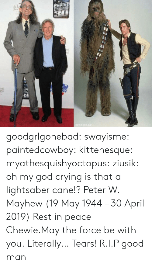 Lightsaber: St. Ju  Resc  EMPIRE  ns  al  ipi  OD goodgrlgonebad:  swayisme:  paintedcowboy:  kittenesque: myathesquishyoctopus:  ziusik:  oh my god  crying  is that a lightsaber cane!?    Peter W. Mayhew (19 May 1944 – 30 April 2019)  Rest in peace Chewie.May the force be with you.  Literally… Tears!  R.I.P good man