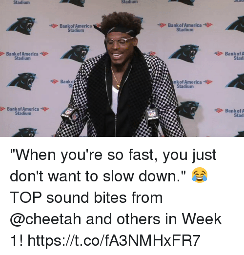 """America, Memes, and Nfl: Stadium  Stadiumm  Bankof America  Stadium  Bank of America  Stadium  Bank of America  Stadium  Bank of A  Stad  Banko  St  nk of America  Stadium  Bank of America  Stadium  Banko  NFL  Stad """"When you're so fast, you just don't want to slow down."""" 😂  TOP sound bites from @cheetah and others in Week 1! https://t.co/fA3NMHxFR7"""