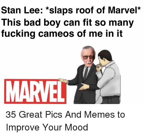 marvell: Stan Lee: *slaps roof of Marvel*  This bad boy can fit so many  fucking cameos of me in it  MARVELL 35 Great Pics And Memes to Improve Your Mood