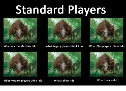 What I really do: Standard Players  What my friends think I dohat Legacy players think I do What EDH players thinks I do  What Modern players think I do  What I think I do  What I really do