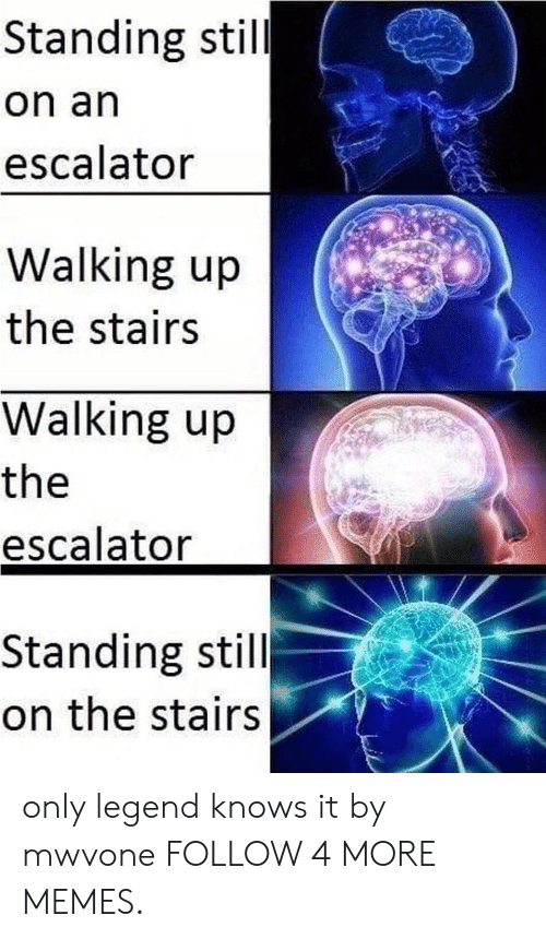 Dank, Memes, and Reddit: Standing still  on an  escalator  Walking up  the stairs  Walking up  the  escalator  Standing still  on the stairs only legend knows it by mwvone FOLLOW 4 MORE MEMES.