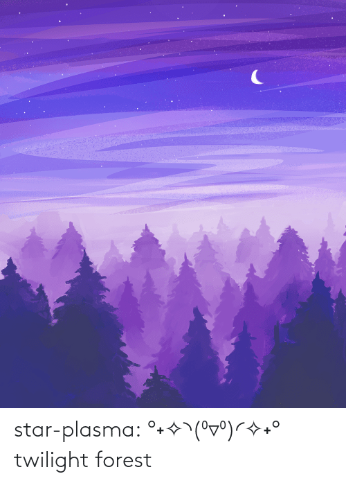 forest: star-plasma:  °˖✧◝(⁰▿⁰)◜✧˖° twilight forest