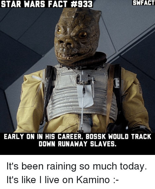 Memes, Star Wars, and Live: STAR WARS FACT #933  SWFACT  EARLY ON IN HIS CAREER, BOSSK WOULD TRACK  DOWN RUNAWAY SLAVES. It's been raining so much today. It's like I live on Kamino :-