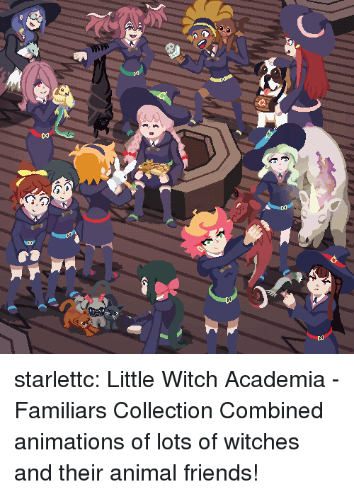 animations: starlettc: Little Witch Academia - Familiars Collection Combined animations of lots of witches and their animal friends!