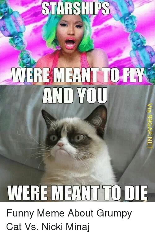 Funny, Meme, and Nicki Minaj: STARSHIPS  WERE  MEANT TO-FLY  AND YOU  WERE MEANT TO DIE Funny Meme About Grumpy Cat Vs. Nicki Minaj