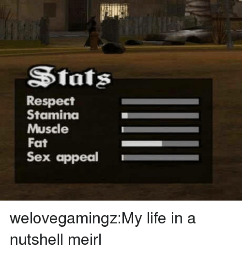 sex appeal: Stats  Respect  Stamina  Muscle  Fat  Sex appeal welovegamingz:My life in a nutshell meirl
