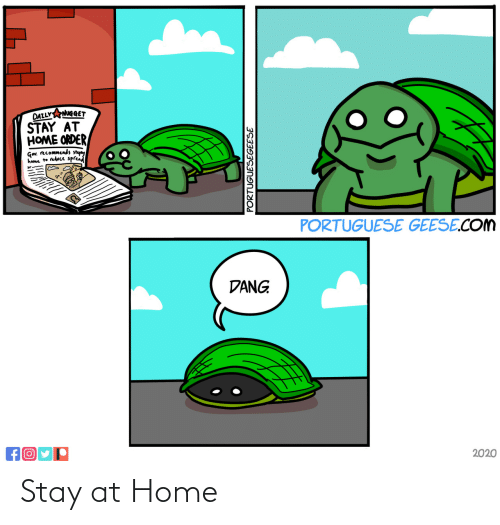 Stay At Home: Stay at Home
