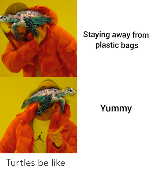 Be Like, Yummy, and Plastic: Staying away from  plastic bags  Yummy Turtles be like