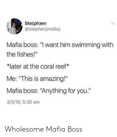 "reef: Ste(ph)en  @stephenjmolloy  Mafia boss: ""I want him swimming with  the fishes!""  later at the coral reef  Me: ""This is amazing!""  Mafia boss: ""Anything for you.""  3/3/16, 5:30 am Wholesome Mafia Boss"