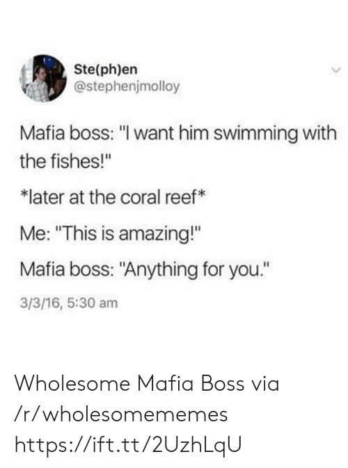 "reef: Ste(ph)en  @stephenjmolloy  Mafia boss: ""I want him swimming with  the fishes!""  later at the coral reef  Me: ""This is amazing!""  Mafia boss: ""Anything for you.""  3/3/16, 5:30 am Wholesome Mafia Boss via /r/wholesomememes https://ift.tt/2UzhLqU"