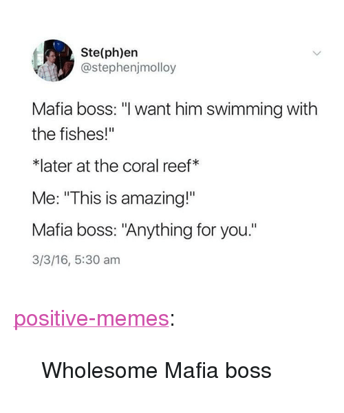 "Memes, Tumblr, and Blog: Ste(ph)en  @stephenjmolloy  Mafia boss: ""l want him swimming with  the fishes!""  *later at the coral reef*  Me: ""This is amazing!""  Mafia boss: ""Anything for you.""  3/3/16, 5:30 am <p><a href=""https://positive-memes.tumblr.com/post/168181001375/wholesome-mafia-boss"" class=""tumblr_blog"">positive-memes</a>:</p><blockquote><p>Wholesome Mafia boss</p></blockquote>"