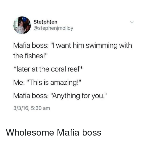"Amazing, Wholesome, and 16.5: Ste(ph)en  @stephenjmolloy  Mafia boss: ""l want him swimming with  the fishes!""  *later at the coral reef*  Me: ""This is amazing!""  Mafia boss: ""Anything for you.""  3/3/16, 5:30 am <p>Wholesome Mafia boss</p>"