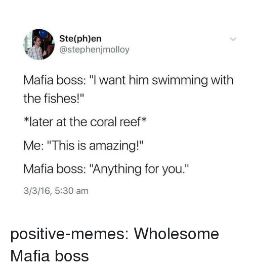 "Memes, Target, and Tumblr: Ste(ph)en  @stephenjmolloy  Mafia boss: ""l want him swimming with  the fishes!""  *later at the coral reef*  Me: ""This is amazing!""  Mafia boss: ""Anything for you.""  3/3/16, 5:30 am positive-memes:  Wholesome Mafia boss"