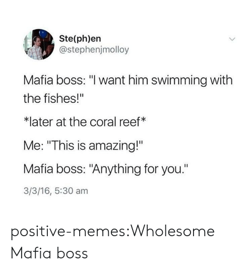 "Memes, Target, and Tumblr: Ste(ph)en  @stephenjmolloy  Mafia boss: ""l want him swimming with  the fishes!""  *later at the coral reef*  Me: ""This is amazing!""  Mafia boss: ""Anything for you.""  3/3/16, 5:30 am positive-memes:Wholesome Mafia boss"