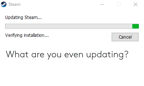Updating Steam: Steam  Updating Steam...  Verifying installation...  Cancel What are you even updating?