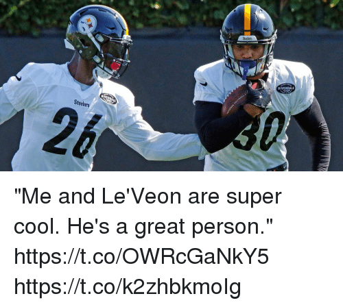 "Memes, Cool, and Steelers: Steelers  RIVENDALE  Steelers ""Me and Le'Veon are super cool. He's a great person."" https://t.co/OWRcGaNkY5 https://t.co/k2zhbkmoIg"