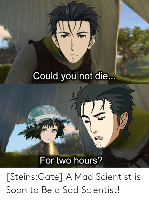 scientist: [Steins;Gate] A Mad Scientist is Soon to Be a Sad Scientist!