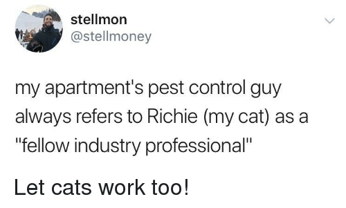 "Cats, Control, and Work: stellmon  @stellmoney  my apartment's pest control guy  always refers to Richie (my cat) as a  ""fellow industry professional"" Let cats work too!"