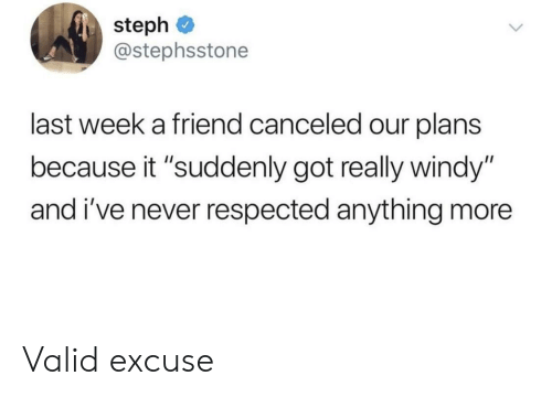 """Steph: steph  @stephsstone  last week a friend canceled our plans  because it """"suddenly got really windy""""  and i've never respected anything more Valid excuse"""