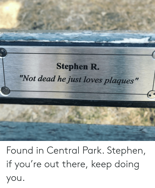 "Stephen: Stephen R.  ""Not dead he just loves plaques"" Found in Central Park. Stephen, if you're out there, keep doing you."