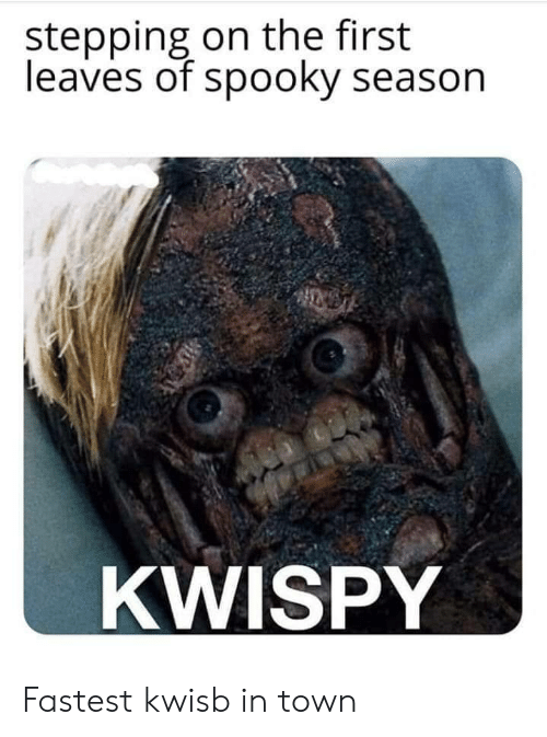 Stepping: stepping on the first  leaves of spooky season  KWISPY Fastest kwisb in town