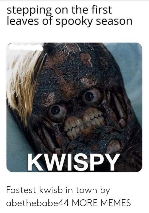 Stepping: stepping on the first  leaves of spooky season  KWISPY Fastest kwisb in town by abethebabe44 MORE MEMES