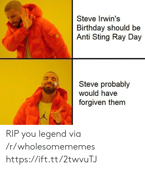 Birthday, Sting, and Anti: Steve Irwin's  Birthday should be  Anti Sting Ray Day  Steve probably  would have  forgiven them RIP you legend via /r/wholesomememes https://ift.tt/2twvuTJ
